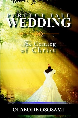 Perfect Fall Wedding by Olabode Ososami