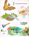 The Young Children's Encyclopedia Volume 2