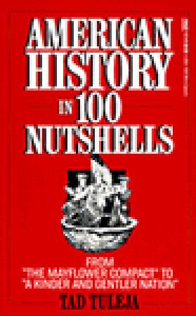 american-history-in-100-nutshells