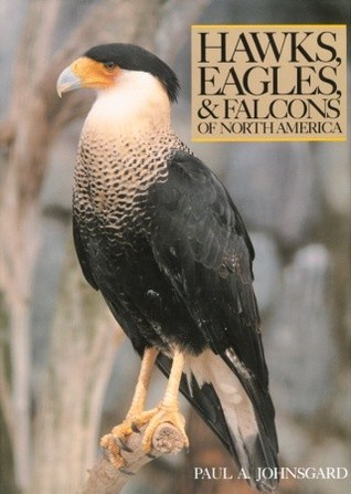 Hawks, Eagles, and Falcons of North America: Biology and Natural History