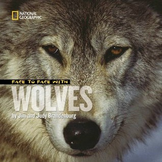 Face to Face With Wolves by Jim Brandenburg