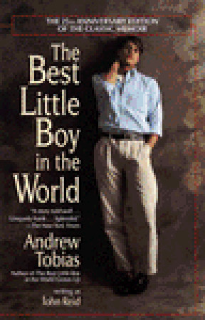 The Best Little Boy in the World by Andrew Tobias