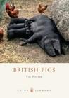 British Pigs