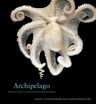 Archipelago: Portraits of Life in the World's Most Remote Island Sanctuary