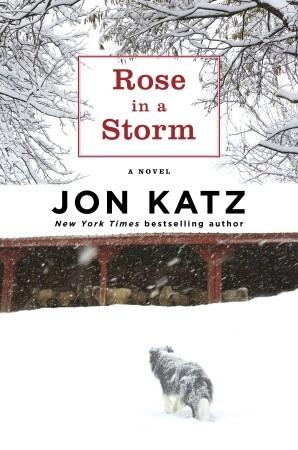 Rose in a Storm by Jon Katz