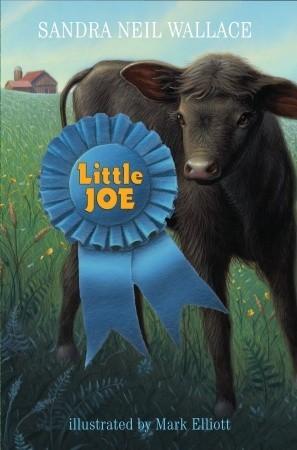 Little Joe by Sandra Neil Wallace