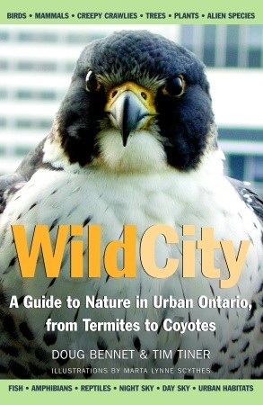 Wild City: A Guide to Nature in Urban Ontario, from Termites to Coyotes