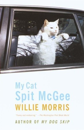 my-cat-spit-mcgee