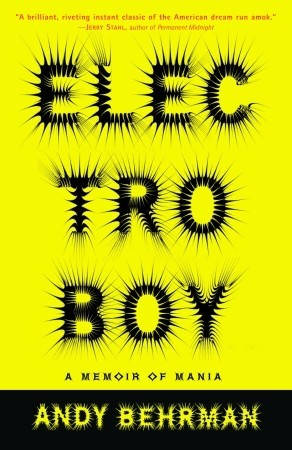 Electroboy: A Memoir of Mania EPUB