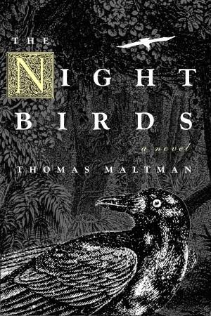 The Night Birds by Thomas Maltman