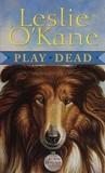 Play Dead (Allie Babcock Mystery, #1)