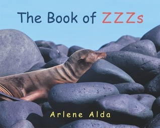 The Book of ZZZs