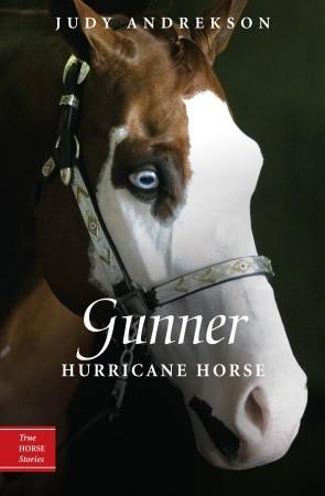 gunner-hurricane-horse