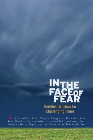 In the Face of Fear by Barry Boyce