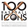 100 Baseball Icons by Terry Heffernan