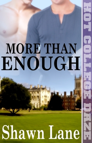 More Than Enough (More, #2)
