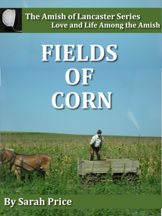 Fields Of Corn Amish Of Lancaster 1 By Sarah Price