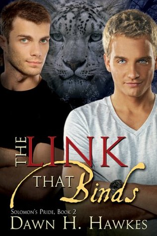 The Link That Binds by Dawn H. Hawkes