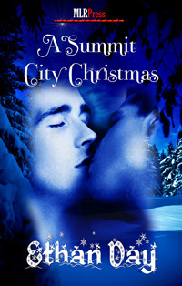 A Summit City Christmas (Summit City, #2.5)