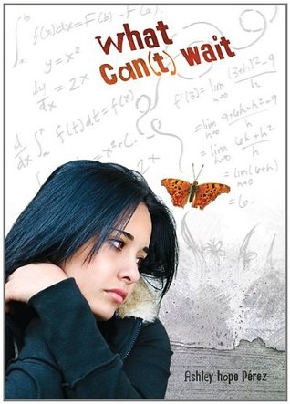 What Can(t) Wait by Ashley Hope Pérez