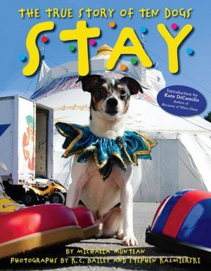 stay-the-true-story-of-ten-dogs