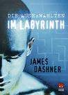 Download Im Labyrinth (Die Auserwhlten, #1)