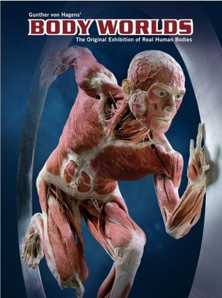 Body Worlds The Original Exhibition Of Real Human Bodies Catalog