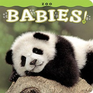 zoo Babies by Lisa Husar