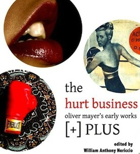 The Hurt Business by William Anthony Nericcio