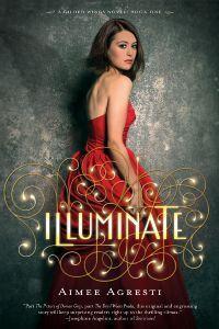 Illuminate by Aimee Agresti