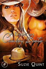 A Knight in Cowboy Boots (McKnight, #1)
