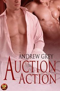Auction Action by Andrew  Grey