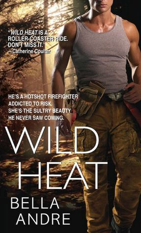 Wild Heat(Hot Shots: Men of Fire 1)