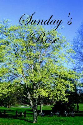 Sunday's Rose