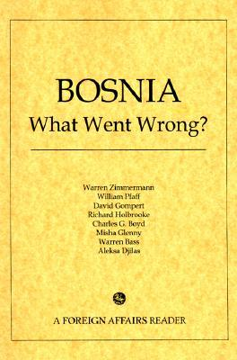 Bosnia: What Went Wrong?