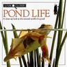 Look Closer: Pond Life