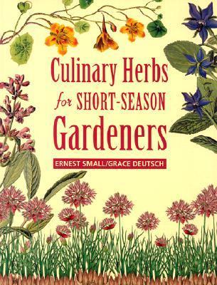 culinary-herbs-for-short-season-gardeners