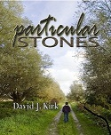 Particular Stones by David J. Kirk