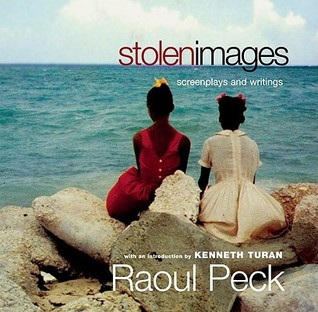 Stolen Images: Screenplays and Writings