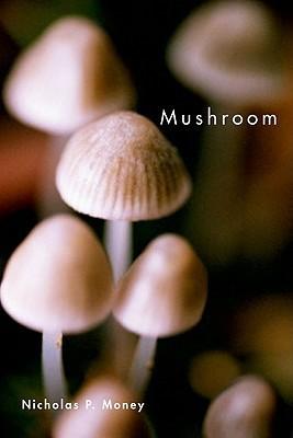 Mushroom by Nicholas P. Money