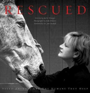 rescued-saved-animals-and-the-humans-they-help