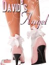 David's Angel (David & Polly, #1)