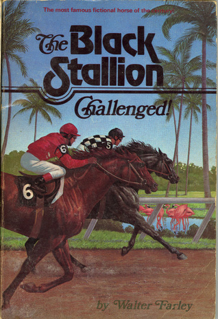 Image result for the black stallion challenged