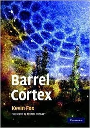 Barrel Cortex by Kevin Fox