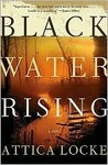 Book cover for Black Water Rising