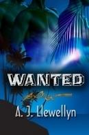 Wanted (Mingo McCloud, #1)