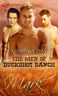 Mark (The Men of Buckshot Ranch, #2)