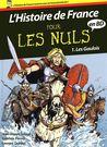 L'Histoire de France en BD Pour les Nuls: 1 Les Gaulois