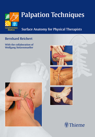 Palpation Techniques Surface Anatomy For Physical Therapists By