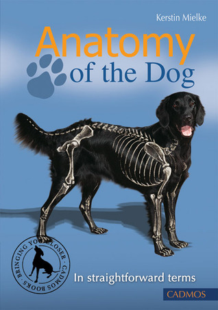 Anatomy Of The Dog In Straightforward Terms By Kerstin Mielke
